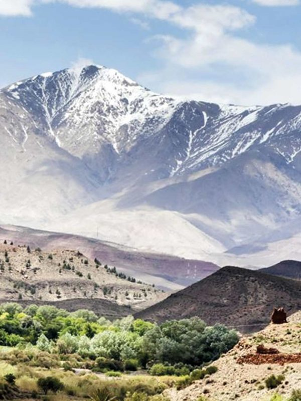 Moroccan Family Ourika Valley & Atlas Mountains Morocco Tours & Excursions