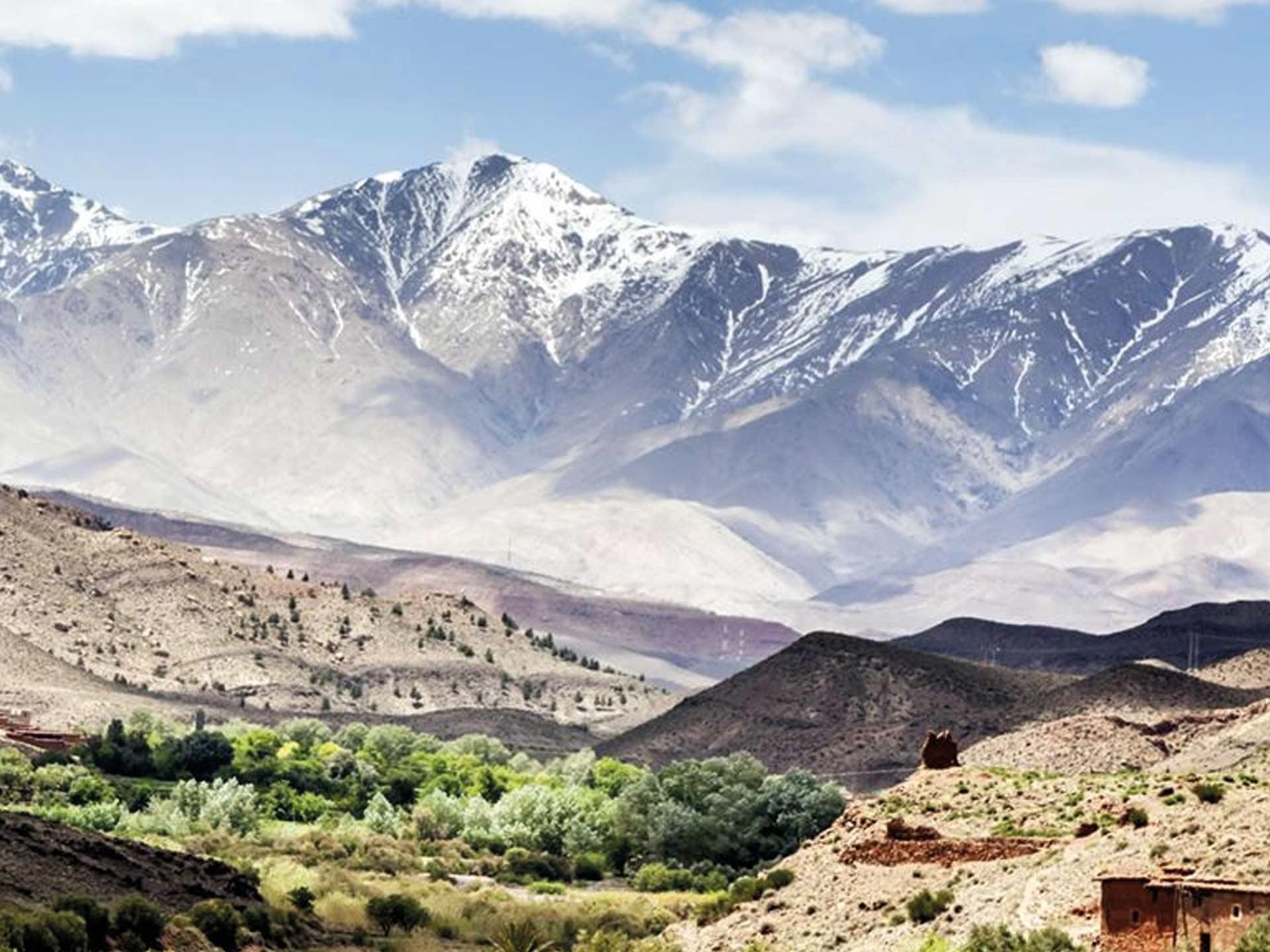 Moroccan Family Ourika Valley & Atlas Mountains Morocco Tours & Excursions